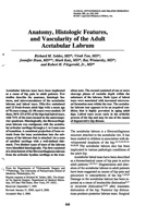 Anatomy, Histologic Features and Vascularity of the Adult Acetabular Labrum